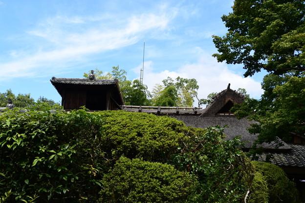 Photos: 初秋の嘯月楼
