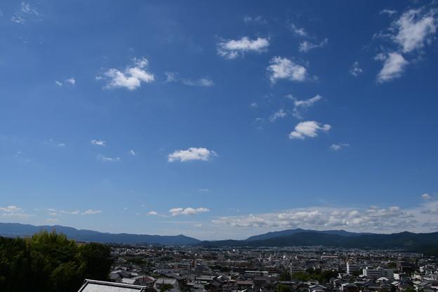 Photos: 裏山からの展望