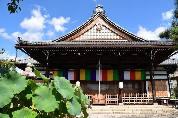 妙蓮寺本堂