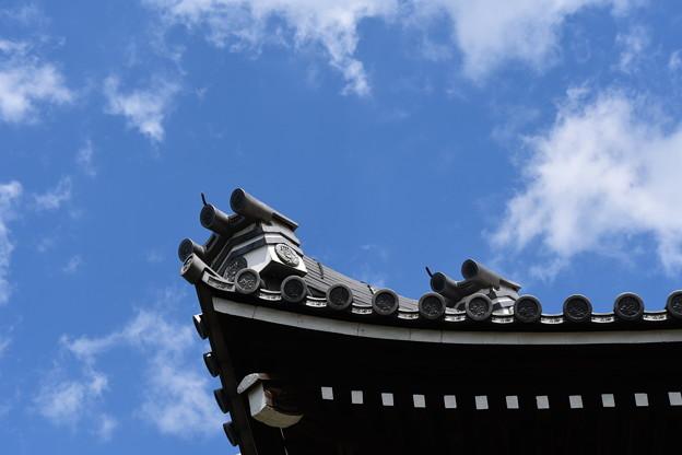 高い屋根、高い空
