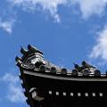 Photos: 高い屋根、高い空