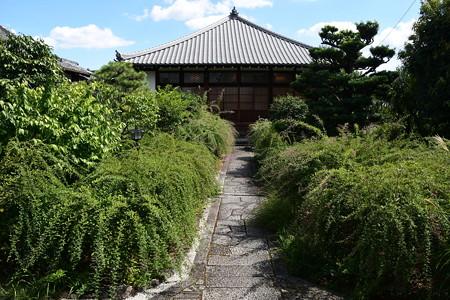 萩の咲き始めた常林寺