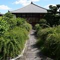 Photos: 萩の咲き始めた常林寺