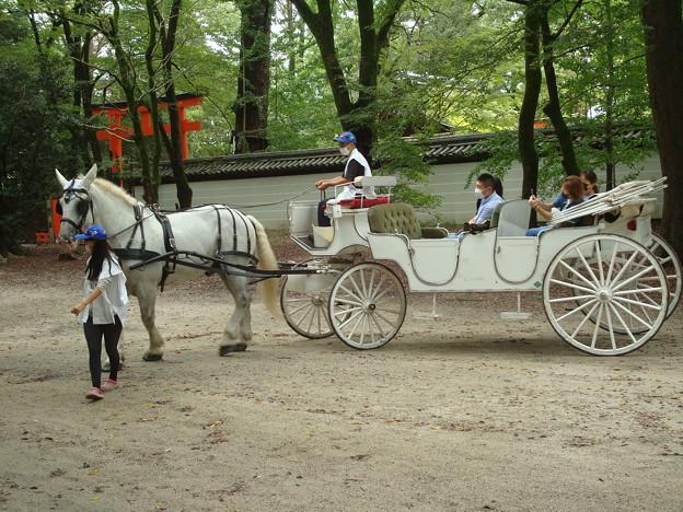 Photos: 馬車