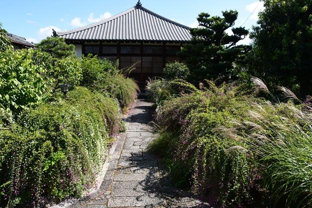 Photos: 萩の寺・常林寺