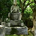 Photos: 西雲院の仏像