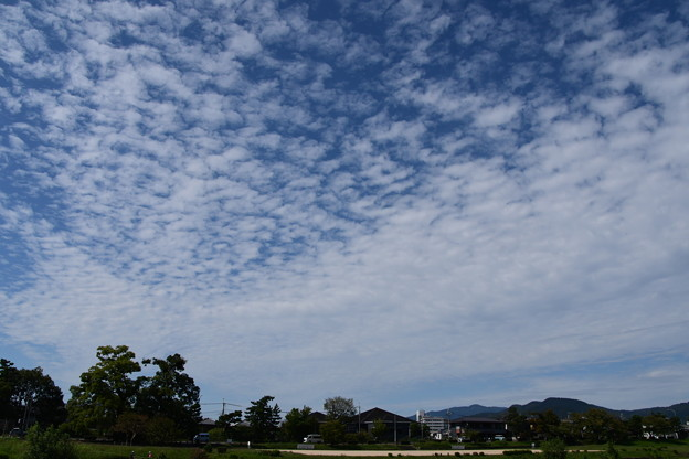 秋の雲広がる賀茂川