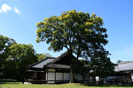 秋空の閑院宮邸跡