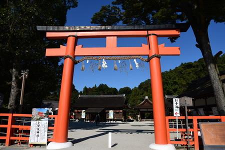 秋晴れの上賀茂神社