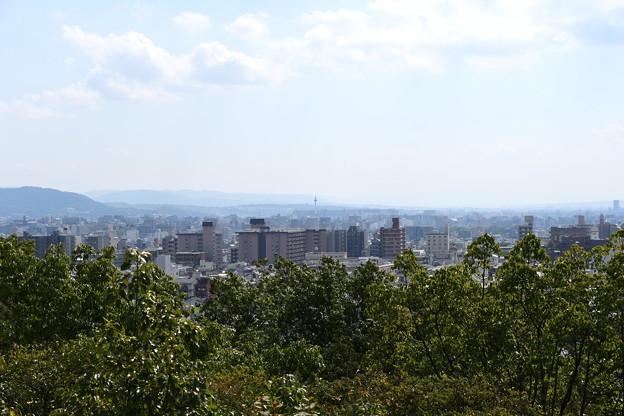 船岡山からの眺望