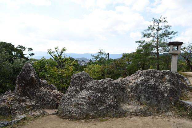 船岡山山頂