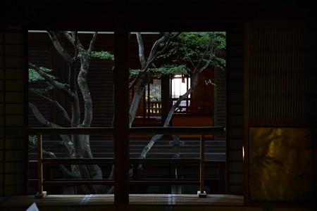 青蓮院風景