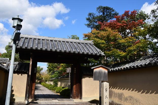 Photos: 芳春院
