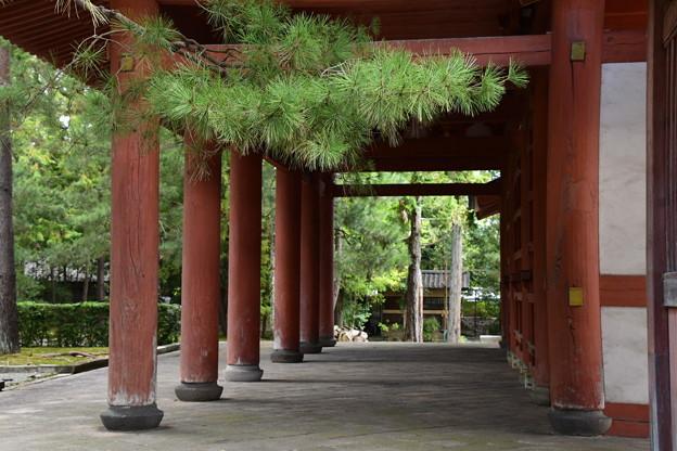 大徳寺風景