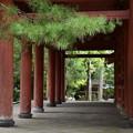 Photos: 大徳寺風景