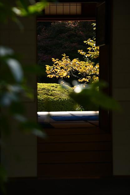 Photos: 入り口脇から