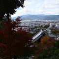 Photos: 裏山への途中から