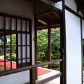 Photos: 十牛の庭