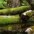 緑の天授庵