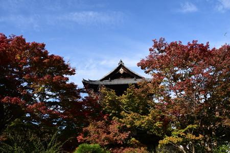 三門を包む紅葉