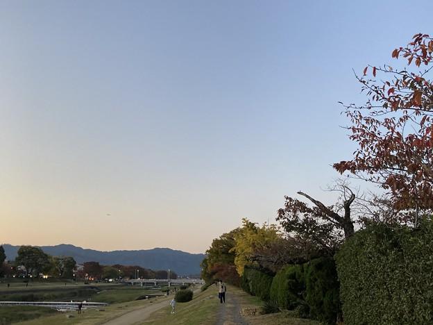 賀茂川夕景