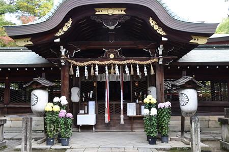 菊の飾られた本殿