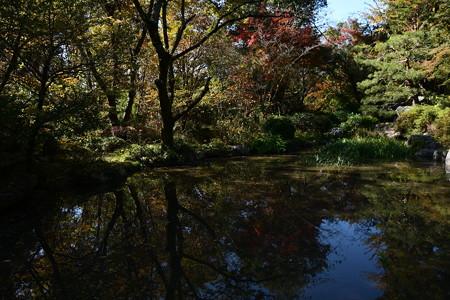 琵琶湖奥の色づき
