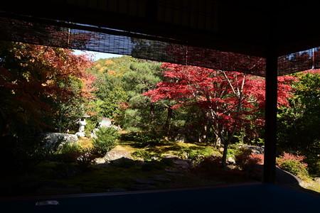 西村家庭園の紅葉