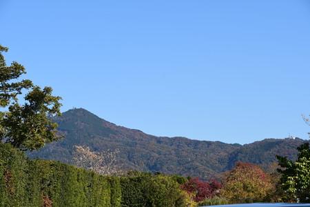 色づき進む比叡山