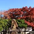 Photos: 人形塚と紅葉