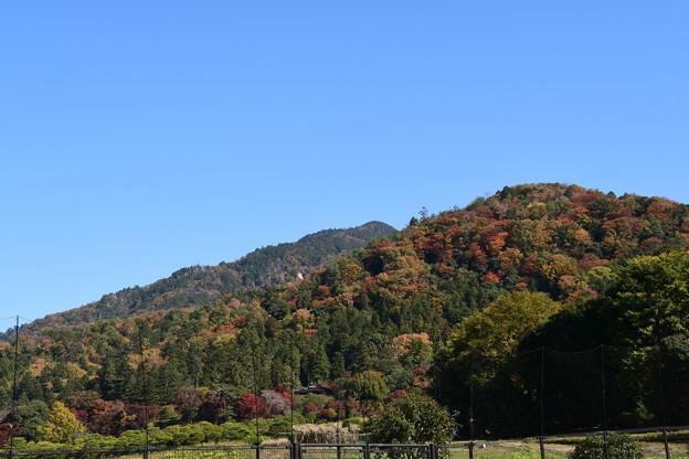 音羽川沿いから見る比叡山