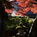 Photos: 禅華院のもみじ