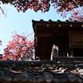Photos: 解脱山禅華院