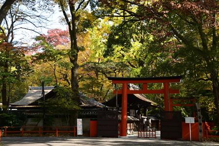 河合神社の彩り