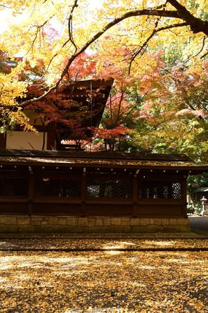彩りの中の上御霊神社