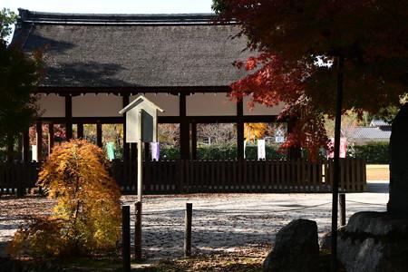 上賀茂神社の紅葉景色
