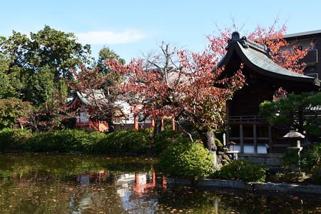 桜もみじの神泉苑