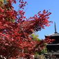 紅葉と文殊塔