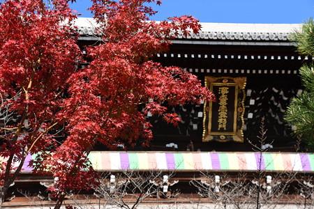 三門を彩る紅葉