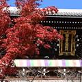 Photos: 三門を彩る紅葉