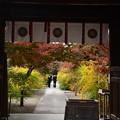 梨木神社の秋