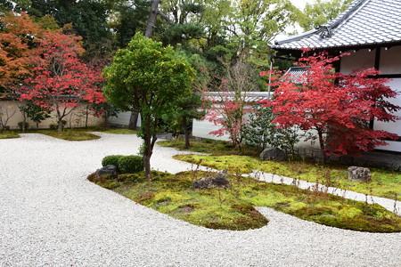 源氏庭の紅葉