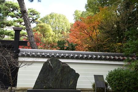 廬山寺の紅葉