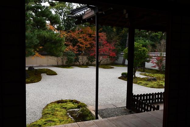 紅葉の源氏庭