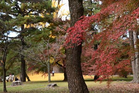 凝華洞跡脇の紅葉