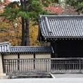Photos: 仙洞御所の彩り