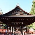 Photos: 拝殿越しの本殿