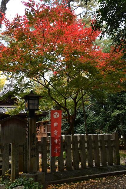 白雲神社の紅葉