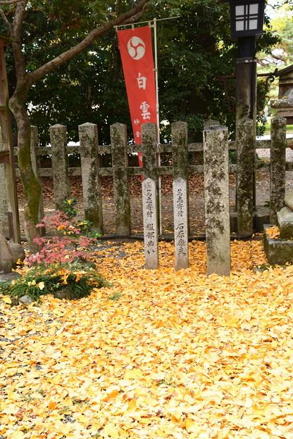 黄色に染まる白雲神社