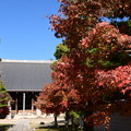 Photos: 妙顕寺の色づき